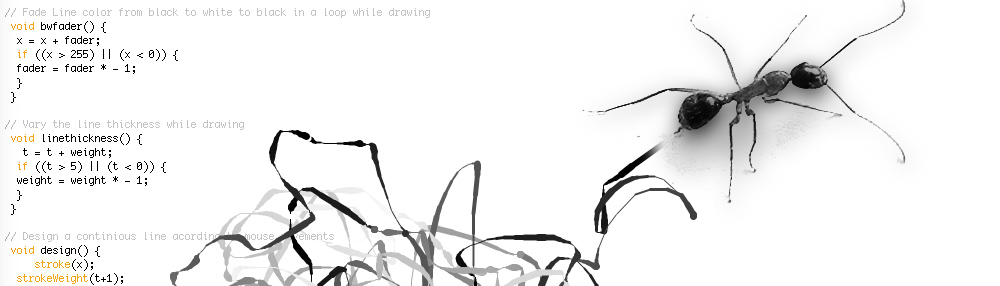 Drawing Ant